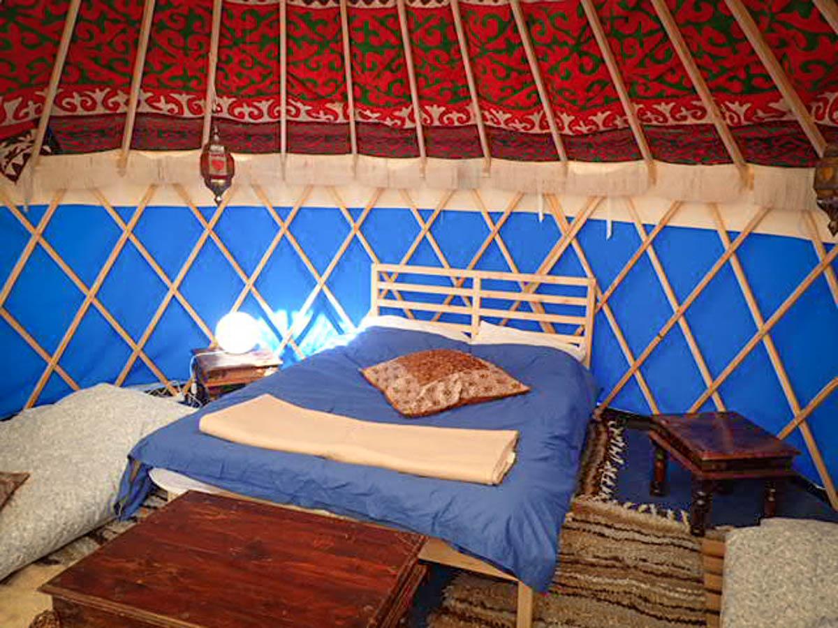 Pine Yurt